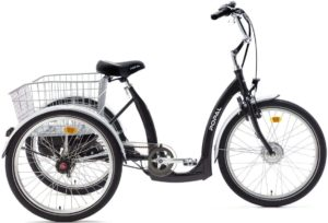 E-Bike Dreirad POZA Elektro Dreirad