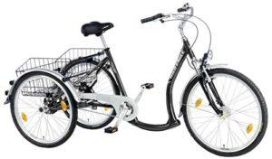 E-Bike 3 Rad Wild Eagle Dreirad