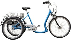 E-Bike Dreirad Wild Eagle Dreirad